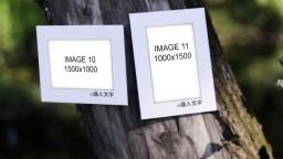 自然风景创意唯美清新m00014插图11