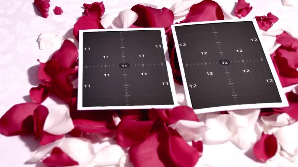 爱情立体玫瑰花吹动展示相册m00017插图11