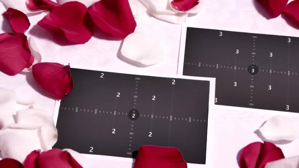 爱情立体玫瑰花吹动展示相册m00017插图2