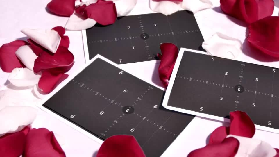爱情立体玫瑰花吹动展示相册m00017插图7