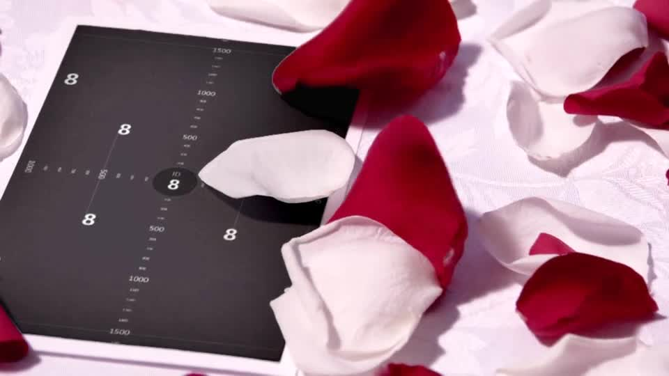 爱情立体玫瑰花吹动展示相册m00017插图8