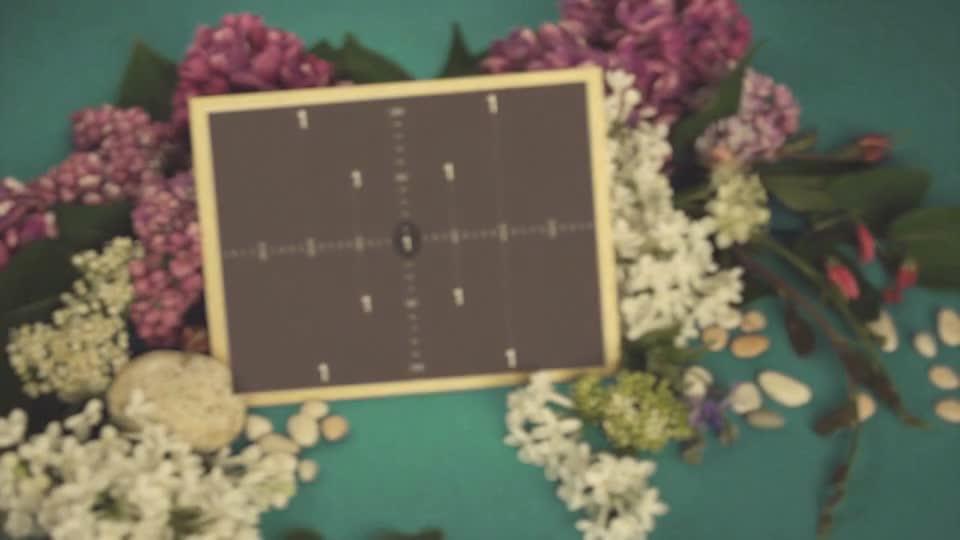 质感鲜花簇拥相框.m00512插图1